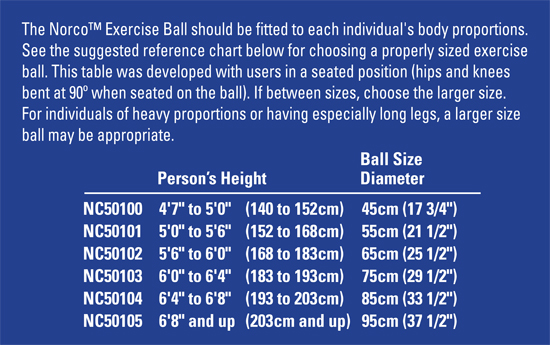 Exercise Ball Chair Weight Limit Peanut Balls Balance